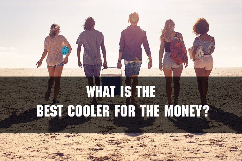 best cooler for money