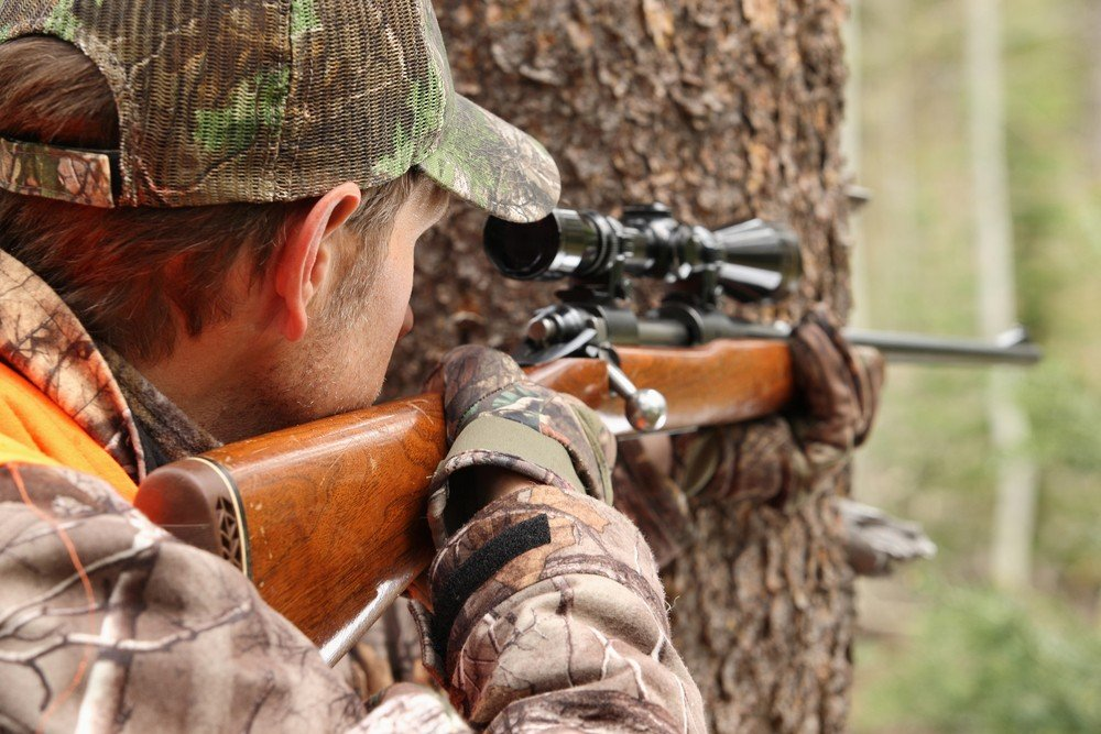 Where to Shoot a Deer for an Easy Kill