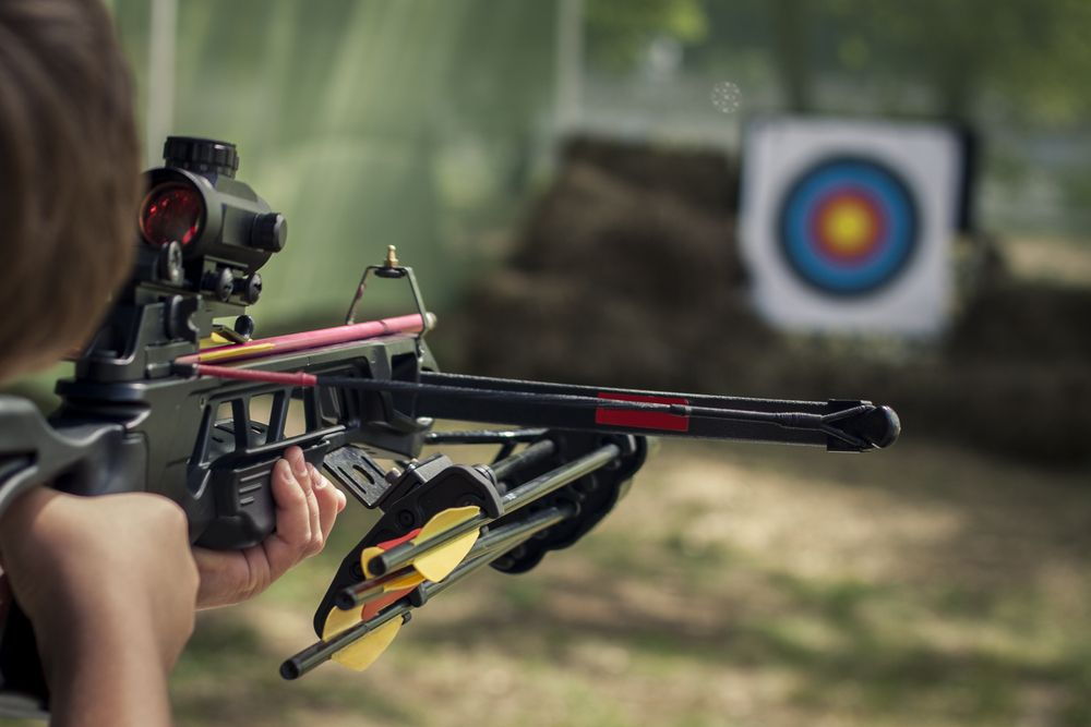 The shooter directed the crossbow towards the colored target. Toned